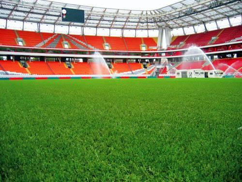 Старый стадион «Локо» будет отстроен в 2014 году